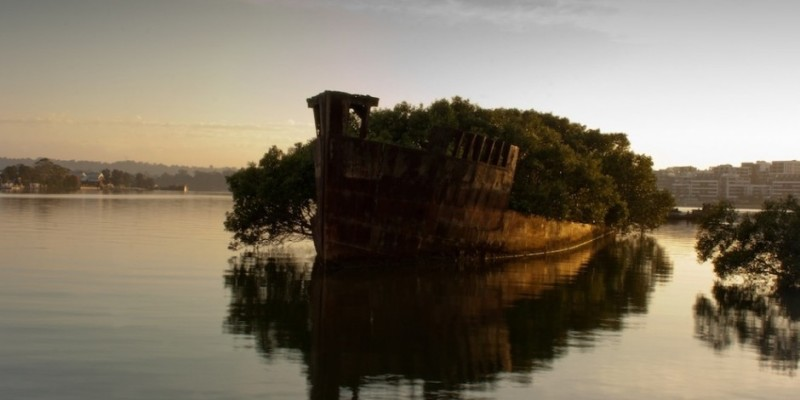 SS Ayrfield, Homebush Bay, Ausztrália