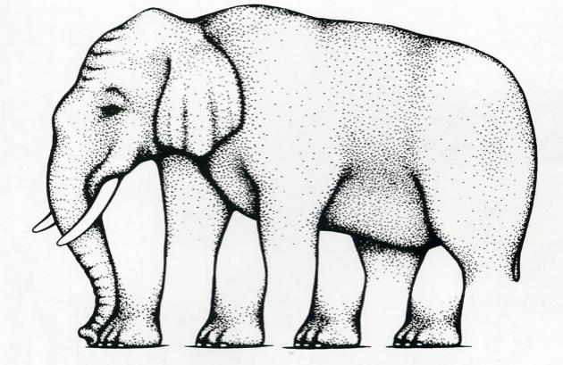 4908905-R3L8T8D-630-elephant.preview